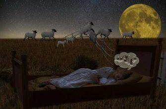 'расстройство циркадного ритма сна'
